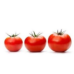 round-tomatoe