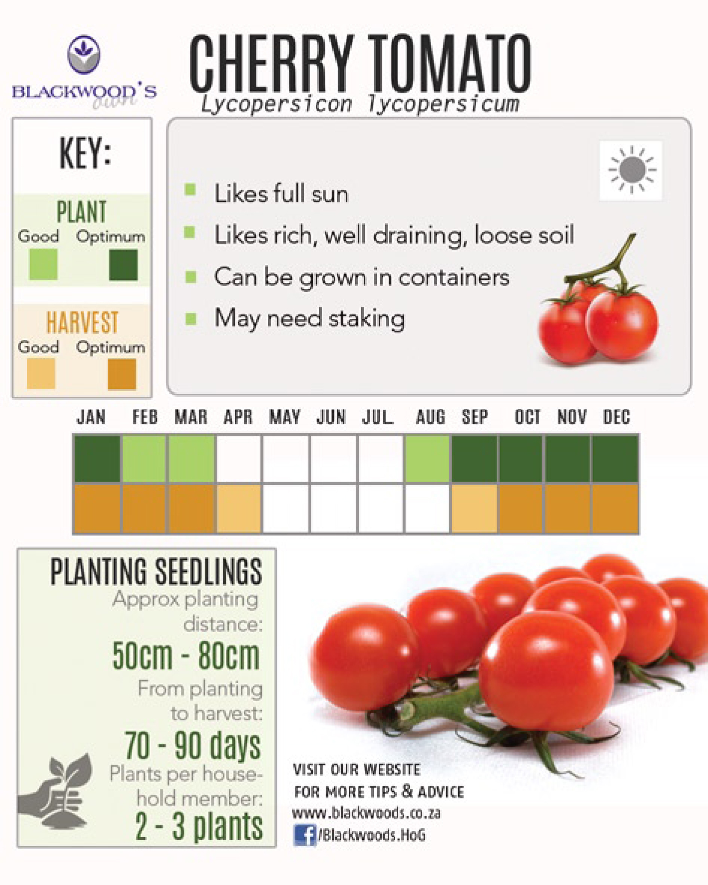 Blackwoods Co Za Download Your Vegetable Planting Charts