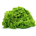 frilly_lettuce