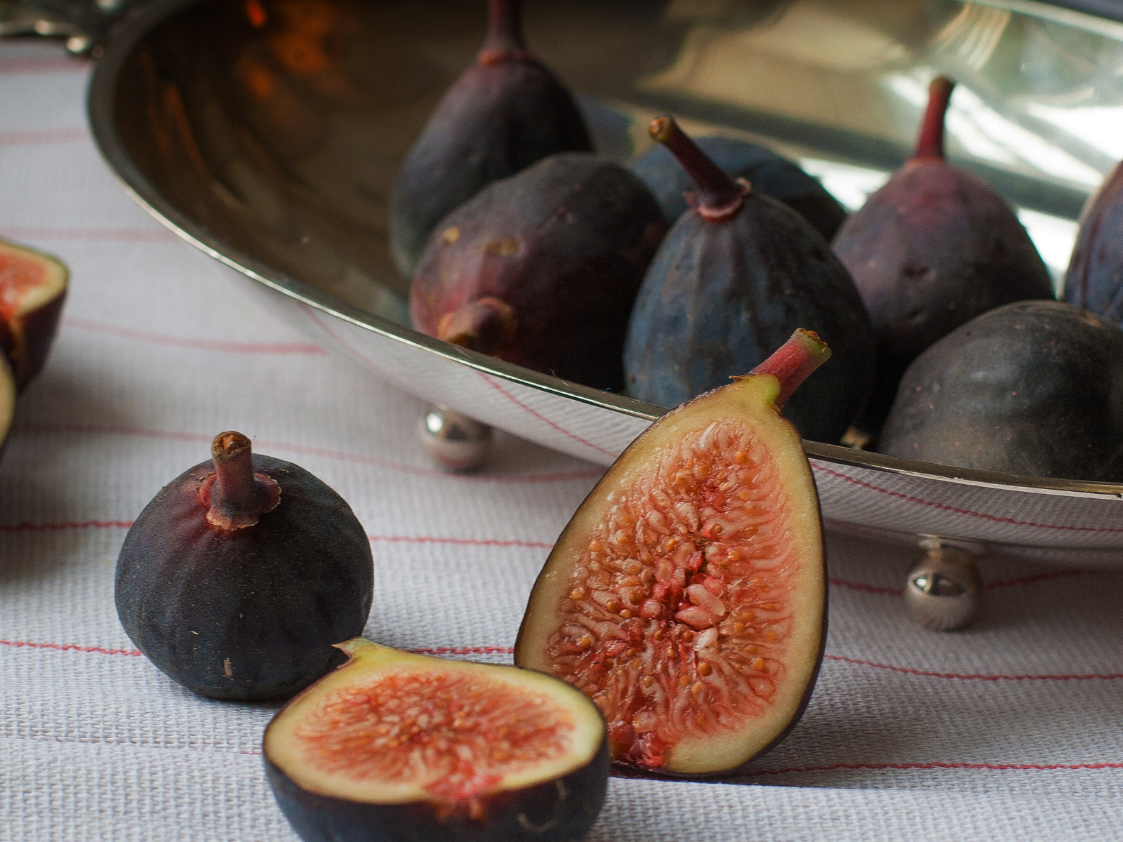 how to grow figs from seed