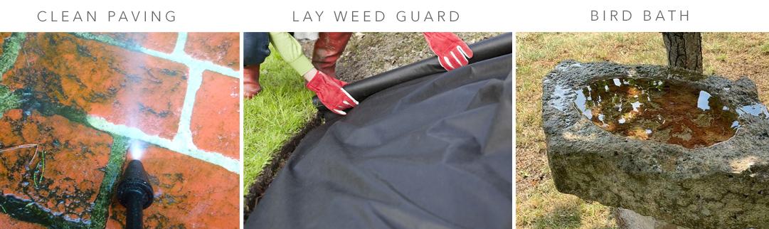 Blackwood's General Garden Care in June