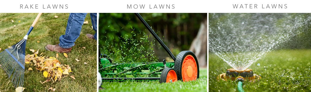 Blackwood's Lawn Care in May
